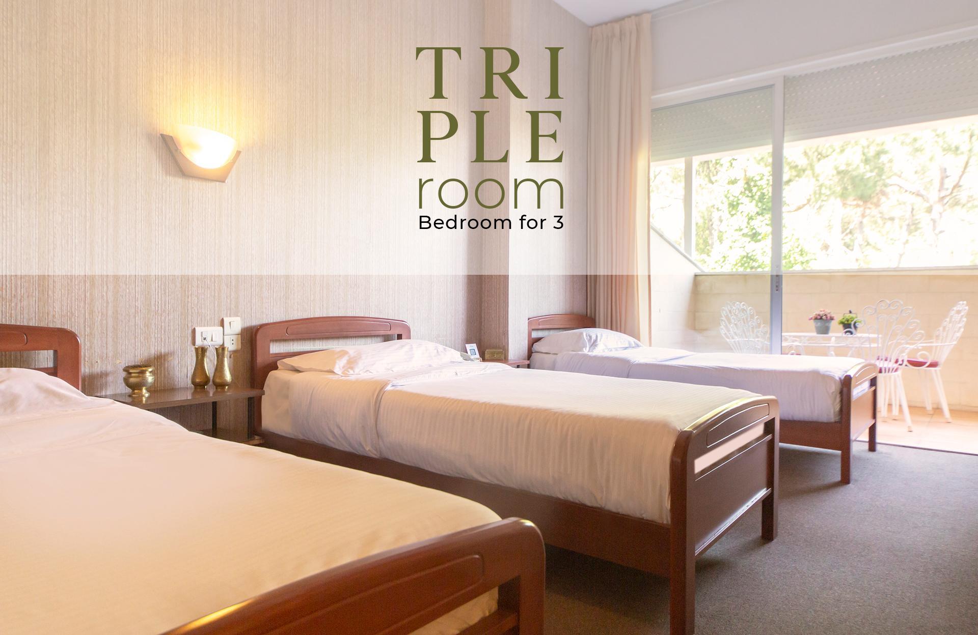 Main Triple Room (NXPowerLite)