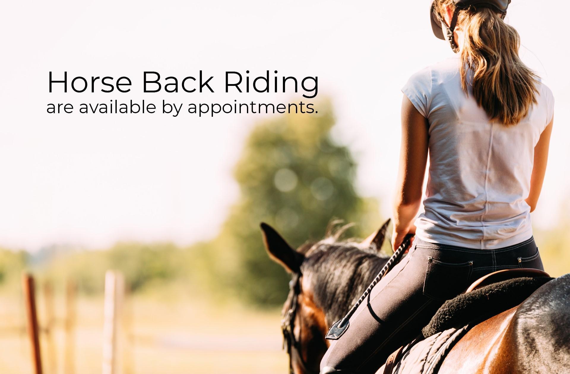 horse-backriding